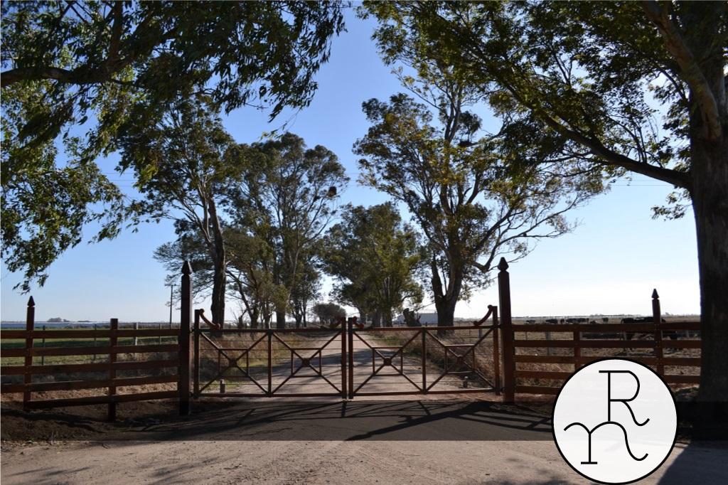 imagen portones rurales entradas para campos